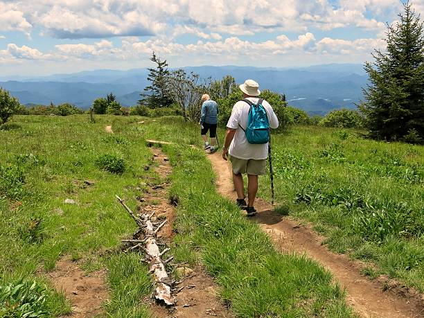 People Hiking Andrew's Bald Trail, Smoky Mountains National Park, Tennessee stock photo