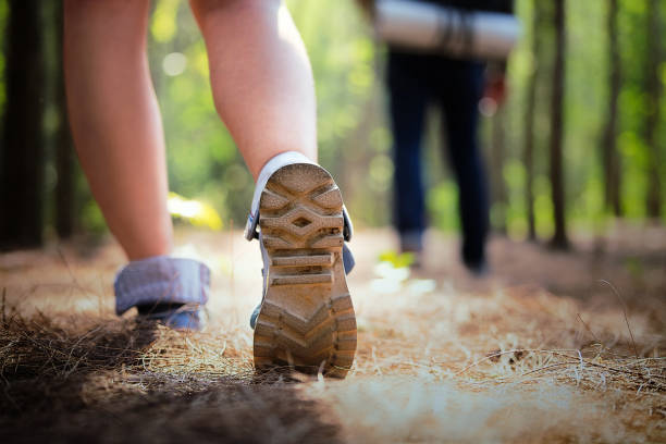 Menschen wandern in den Wald im Sommer. – Foto