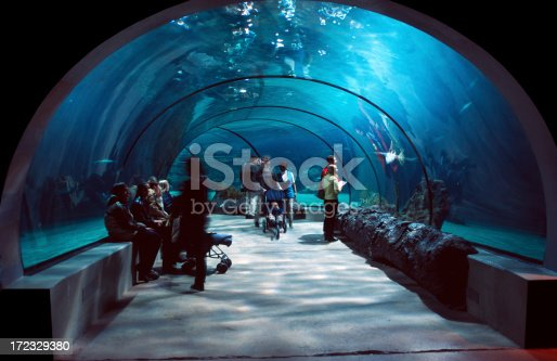 istock People in a water tunnel. 172329380