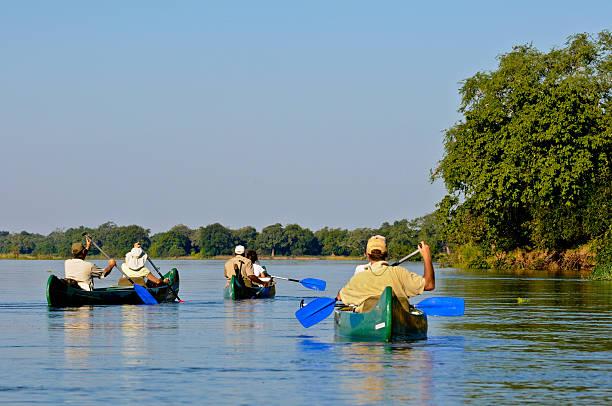 menschen in die kanus auf der sambesi - fluss sambesi stock-fotos und bilder