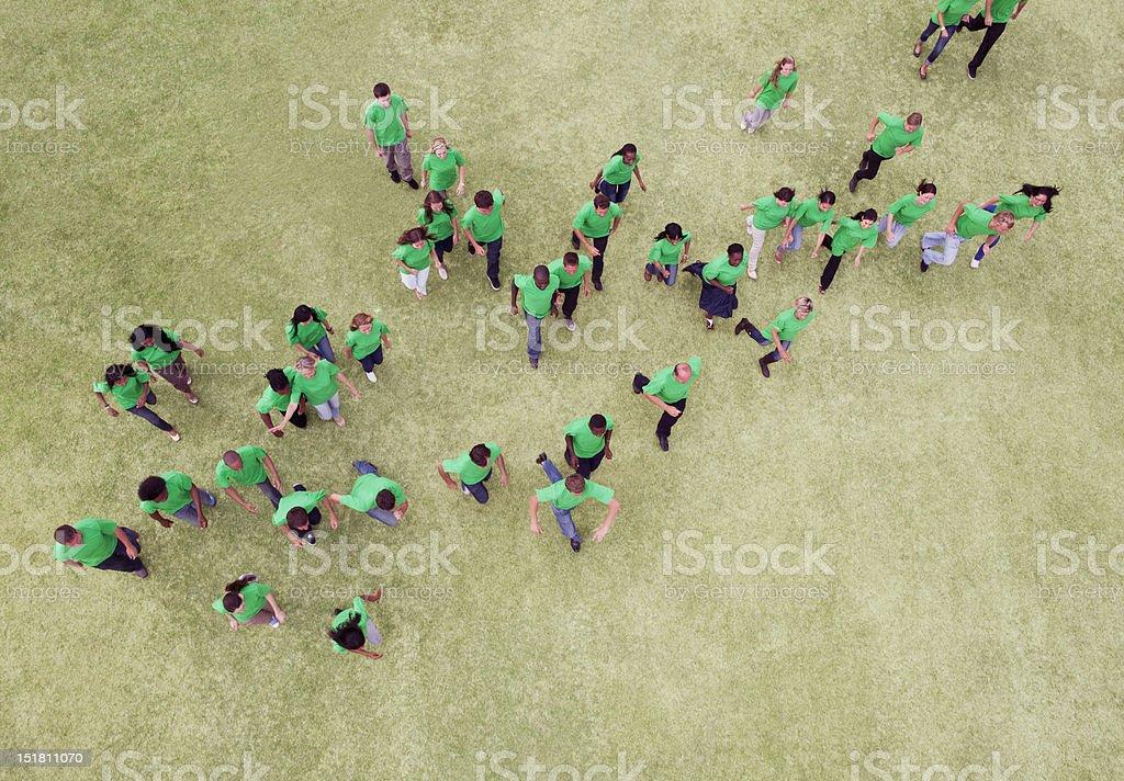 People in green t-shirts walking in field stock photo