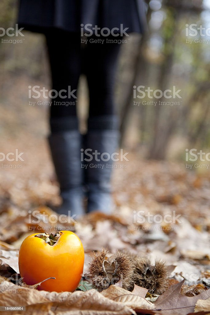 People in nature royalty-free stock photo