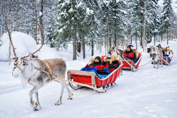 mensen in rendieren slee caravan safari in de winter woud rovaniemi - rendier stockfoto's en -beelden