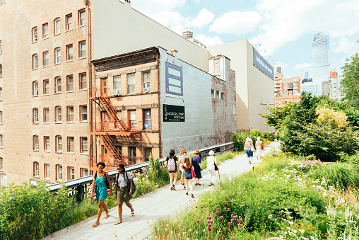 New York City, United States - June 30, 2016: On a warm, sunny, summer day people of all ages walk the landscaped walking path of Manhattan's High Line Park.