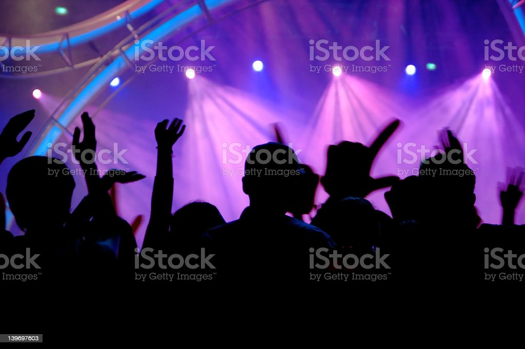 People in the concert royalty-free stock photo