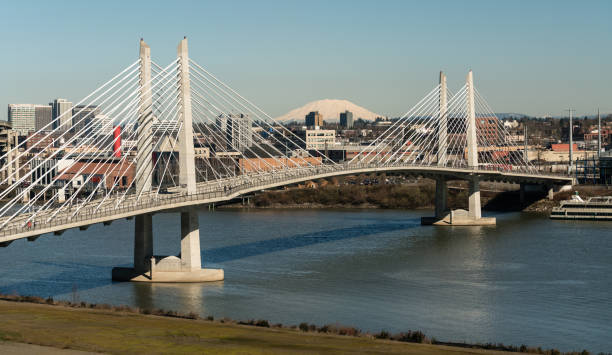 People Move Across Portland Bridge Willamette River Mount St Helens It's a clear day in Portland Oregon at Tilikum Crossing as people traverse the river with Mount St. Helens in the background lake waterfowl stock pictures, royalty-free photos & images