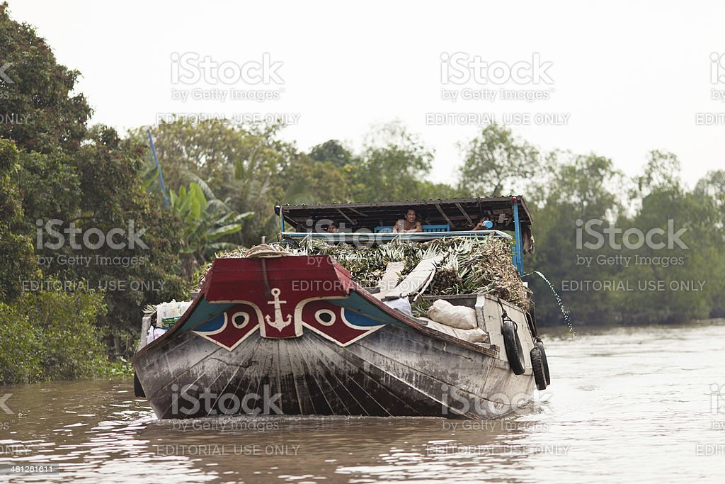 People of Mekong Delta in South Vietnam royalty-free stock photo