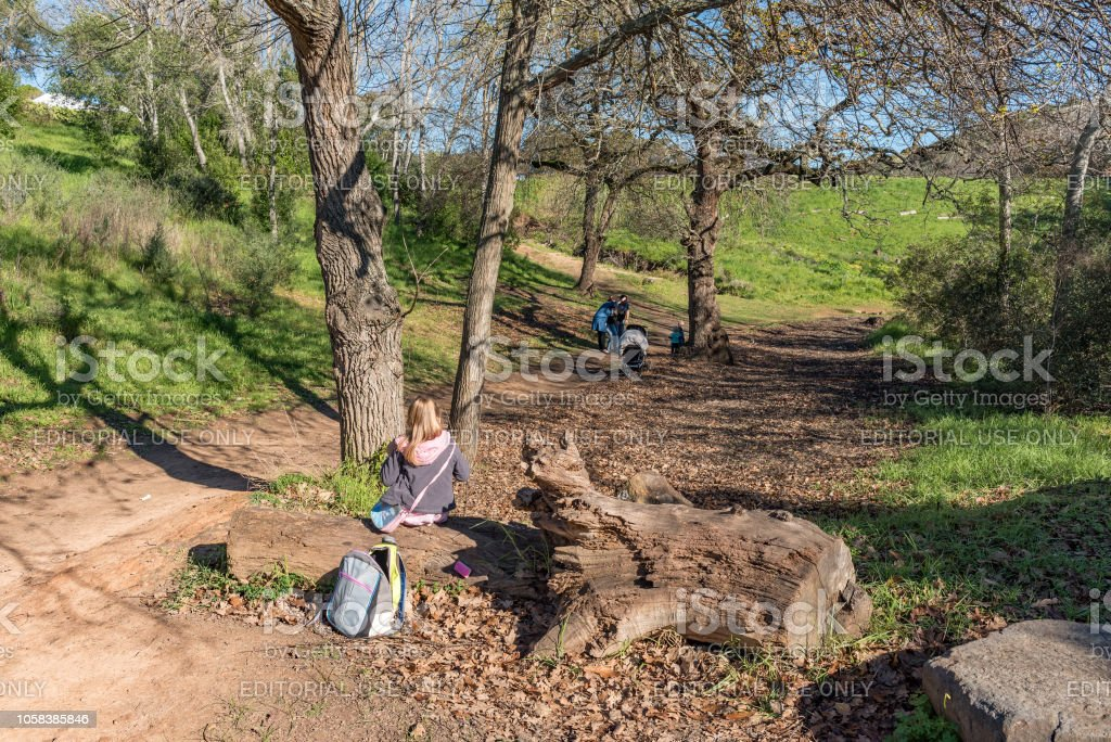 People on a walking trail in Majik Forest in Durbanville stock photo