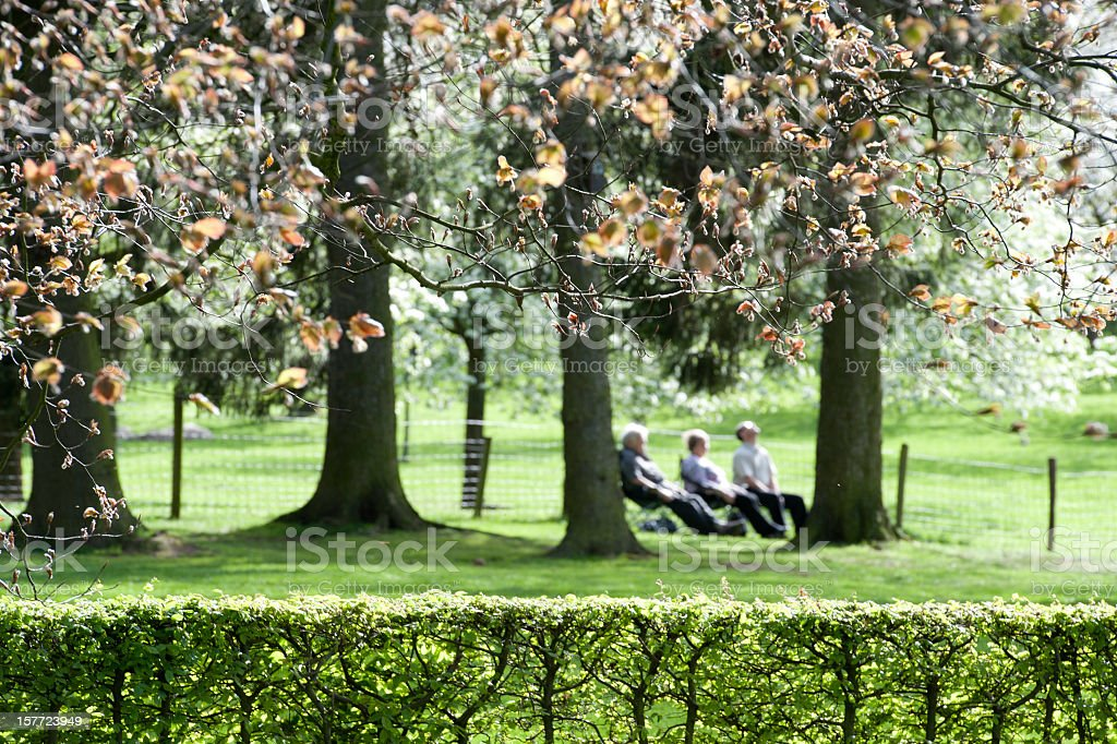 People on bench relaxing in the park in spring royalty-free stock photo
