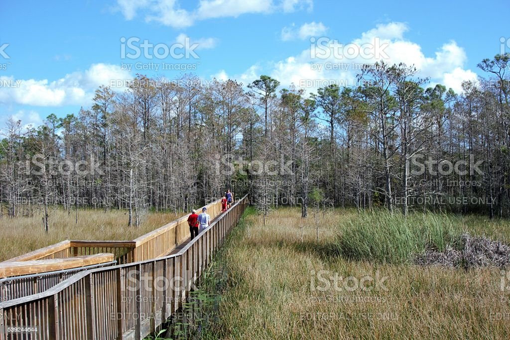 People on walkway in nature preserve royalty-free stock photo
