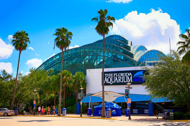 People outside the Florida Aquarium building in Tampa FL, USA stock photo