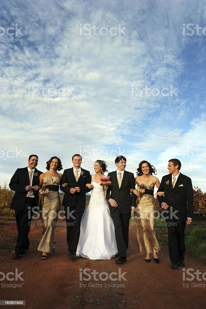 People posing for a photograph at a wedding stock photo