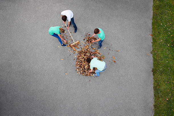 people raking leaves - sweeping stock pictures, royalty-free photos & images