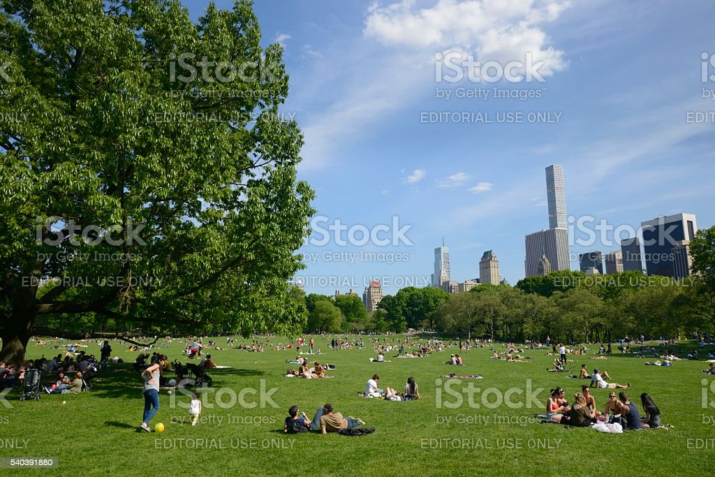 People relaxing in Central Park, Sheep Meadow stock photo