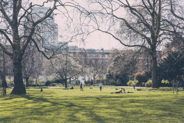 People relaxing on a grass in Russell Square, London, UK. stock photo
