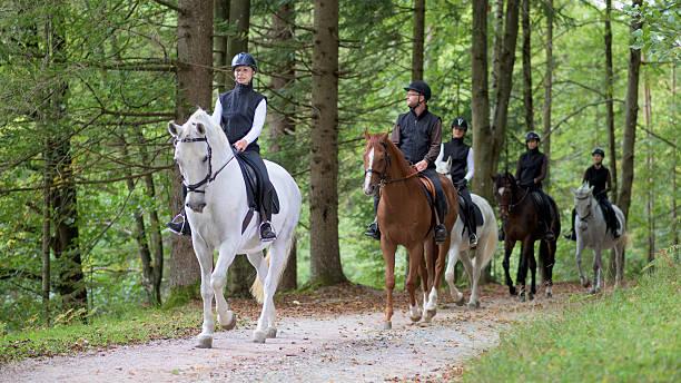 人の馬の乗馬 - 乗馬 ストックフォトと画像