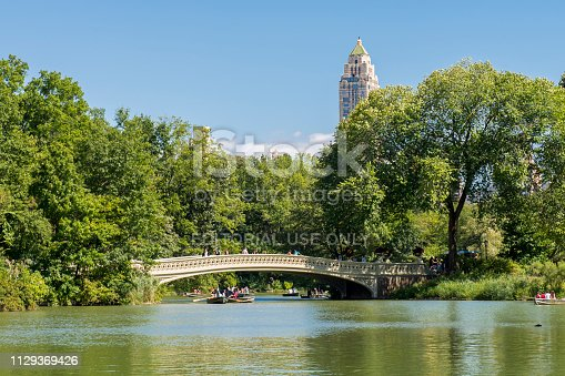 People rowing in a boat on a lake next to a bridge during summer at Central Park, midtown Manhattan, New York City, USA.