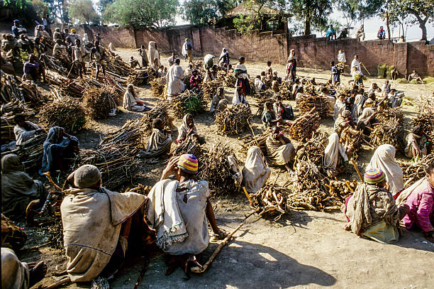 people sell fire wood in early morning in Lalibela foto