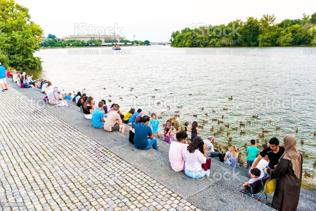 People sitting on steps in Georgetown Waterfront park on riverfront in evening with potomac river feeding ducks, geese stock photo