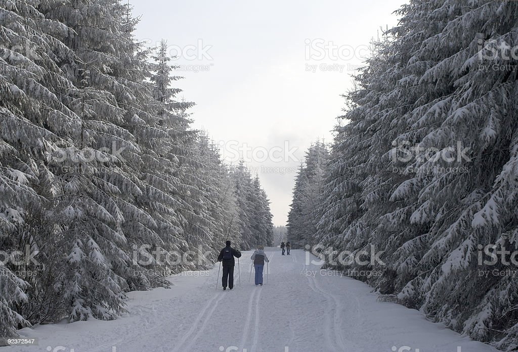 People skiing in a snowy winter forest royalty-free stock photo