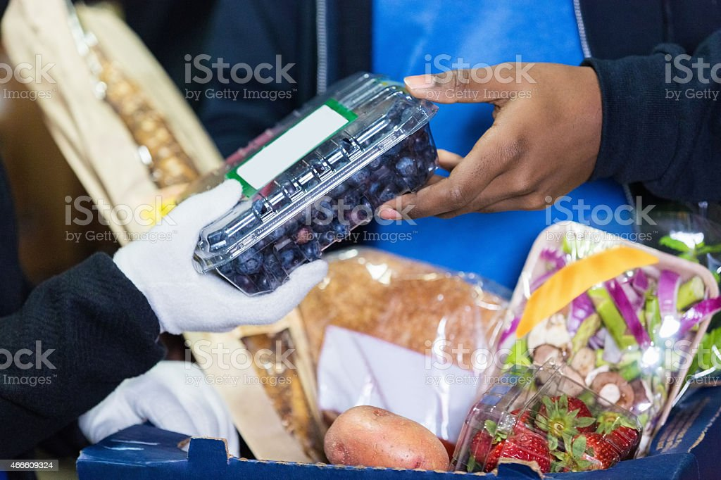 People sorting healthy produce during food drive stock photo