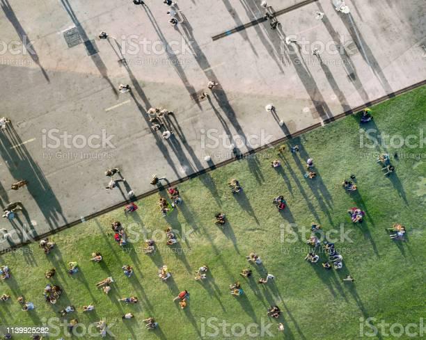 People sunbathing in the park picture id1139925282?b=1&k=6&m=1139925282&s=612x612&h= 65cpovei0oovip6av7p5yvevd5zldgso scncuhuis=