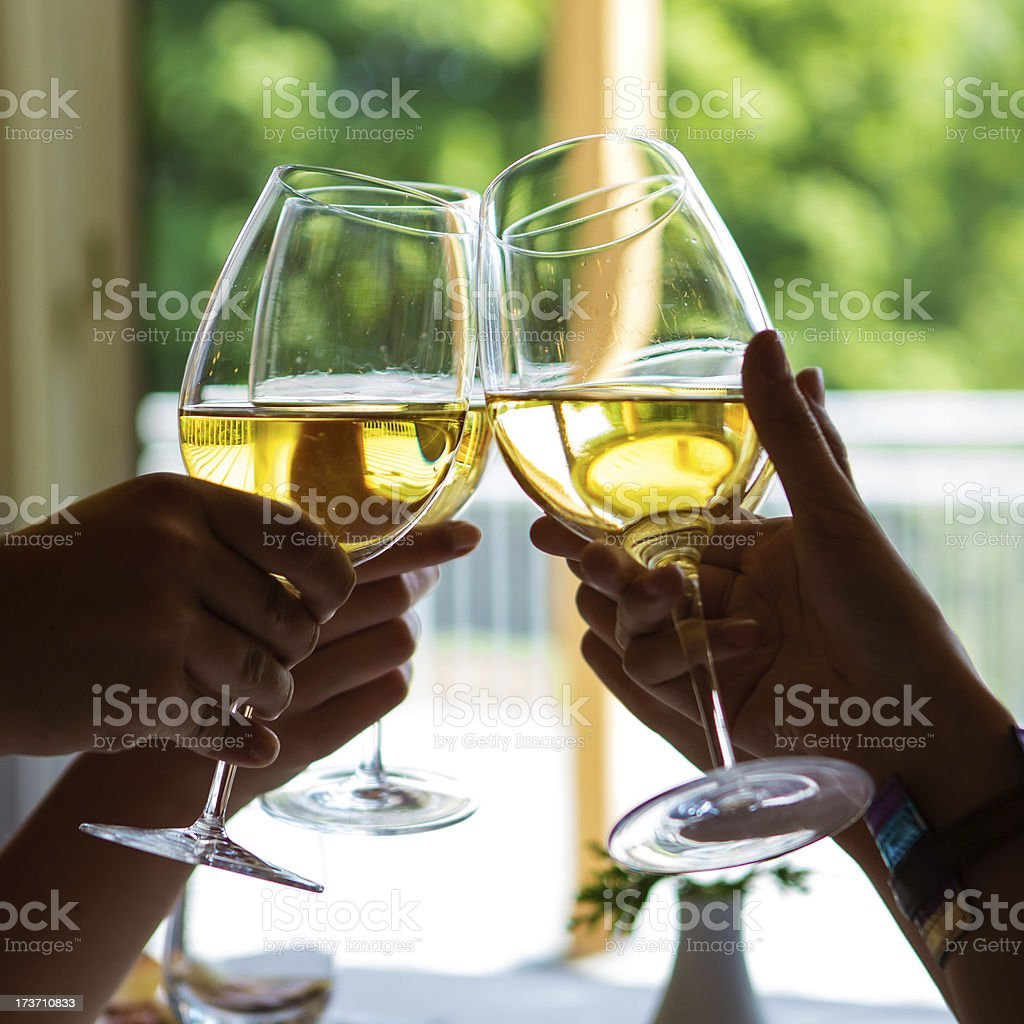 People Toasting royalty-free stock photo