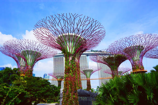 People walk in the Gardens by the Bay stock photo