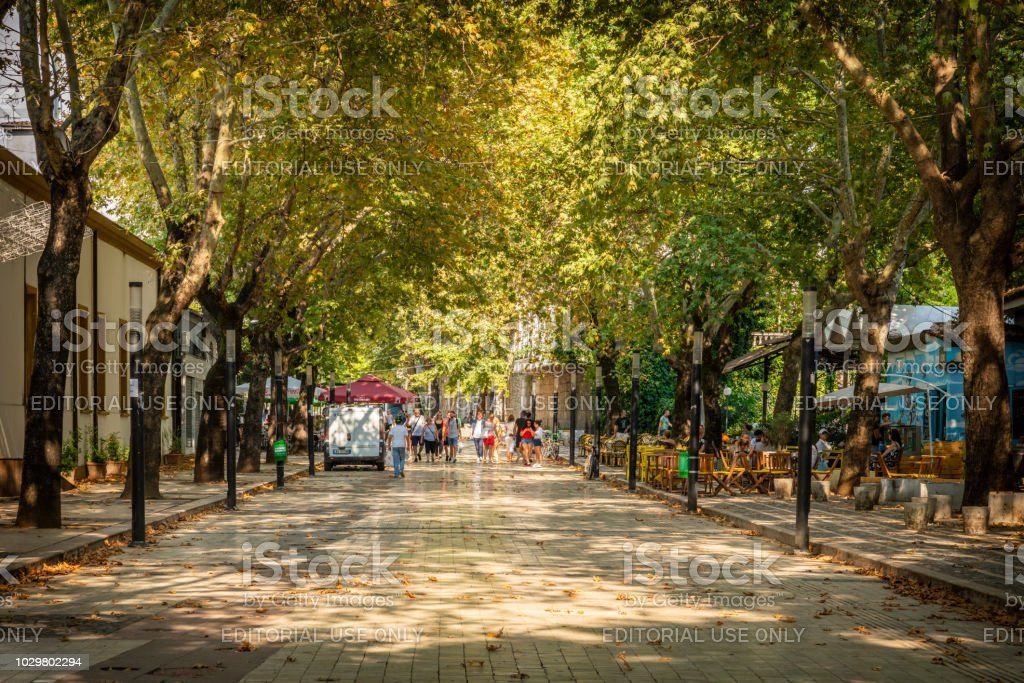 People walking at a pedestrian city street with trees on the side. stock photo