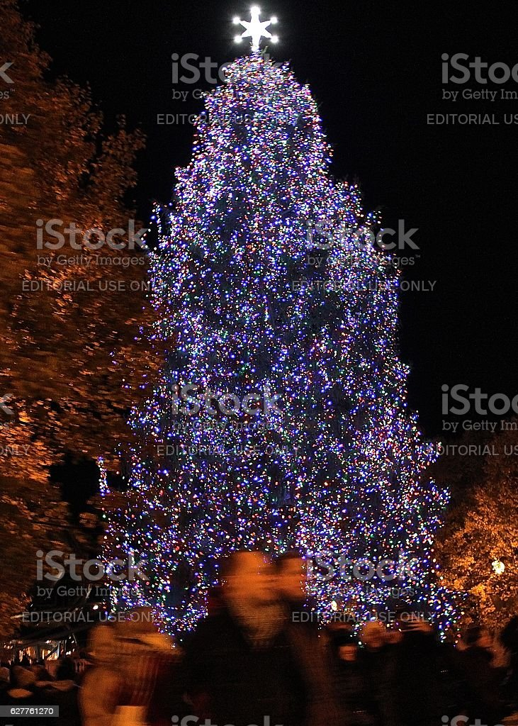 People walking Chicago Christmas Tree at Millennium Park stock photo
