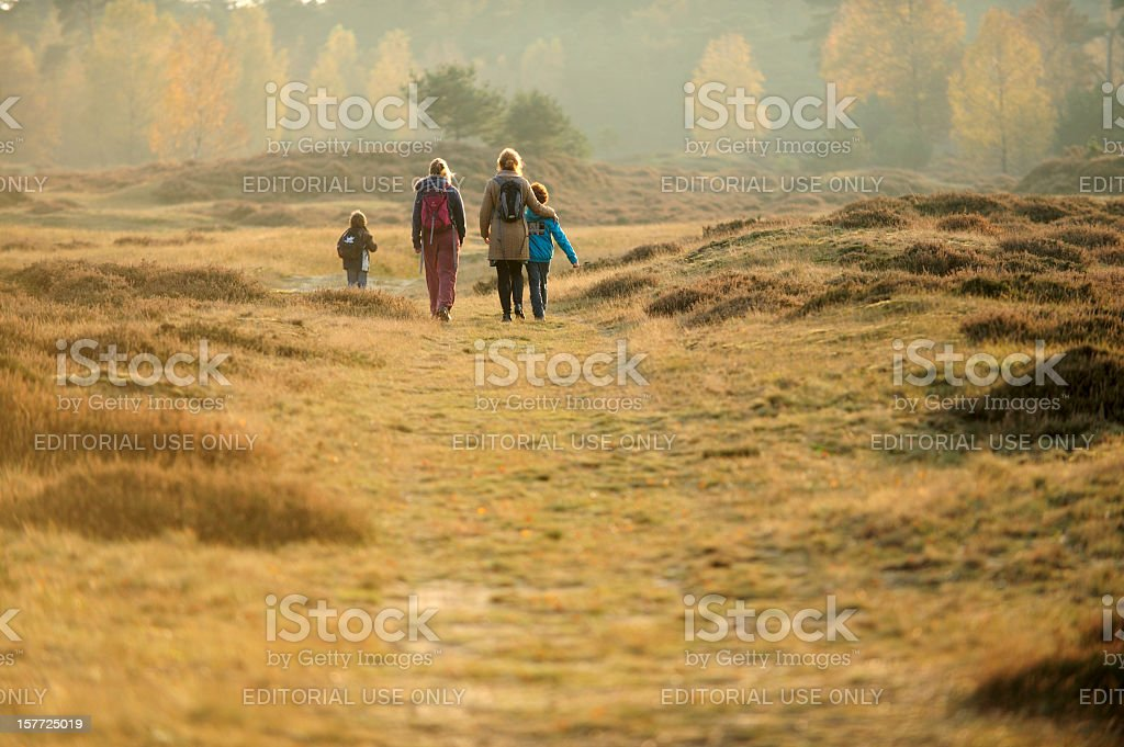 People walking in nature stock photo