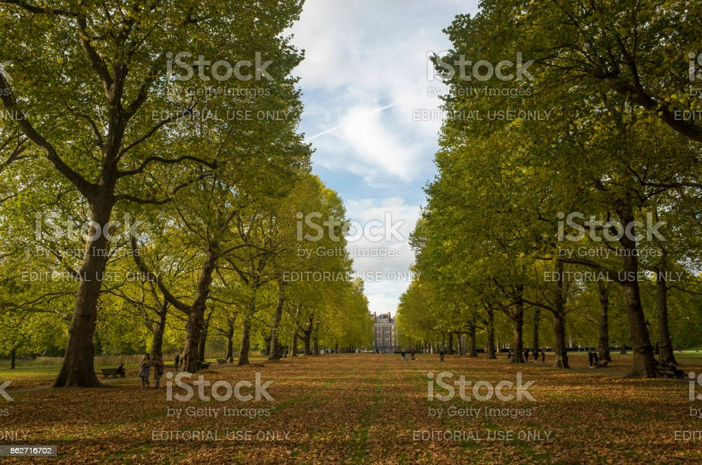 People walking in the park, Beautiful autumn day. stock photo