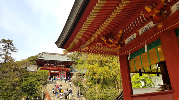 People walking in the Tsurugaoka Hachimangu, Kamakura, Japan Kamakura, Japan - 19 April, 2019: People walking in the Tsurugaoka Hachimangu. The temple is the most important Shinto shrine of the city and hosts two museums and festivals. shinto shrine stock pictures, royalty-free photos & images