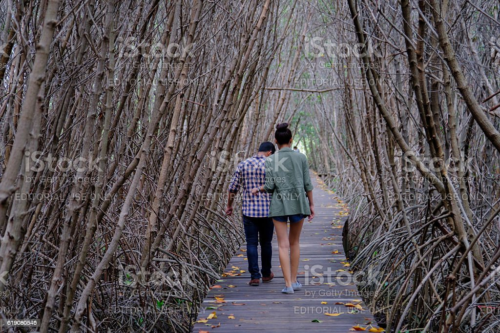 People walking on the bridge in mangrove forest with wood stock photo