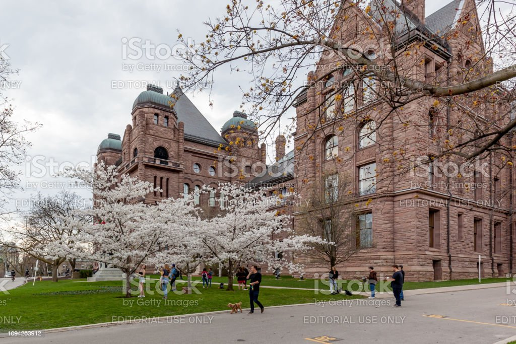 People watching Cherry Blossom with Ontario Legislature Building in background in Queen's Park, Toronto, Ontario stock photo