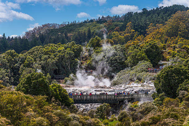 People watching Pohutu Geyser in Rotorua, New Zealand Rotorua, New Zealand - November 20, 2014: People watching Pohutu Geyser in Rotorua, New Zealand whakarewarewa stock pictures, royalty-free photos & images