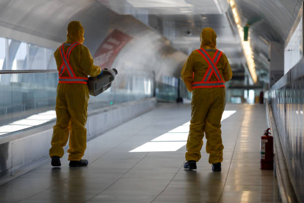 People wearing protective suits spray disinfectant chemicals on the Henri Coanda International Airport to prevent the spreading of the coronavirus. Otopeni, Romania - February 25, 2020: People wearing protective suits spray disinfectant chemicals on the Henri Coanda International Airport to prevent the spreading of the coronavirus. decontamination stock pictures, royalty-free photos & images