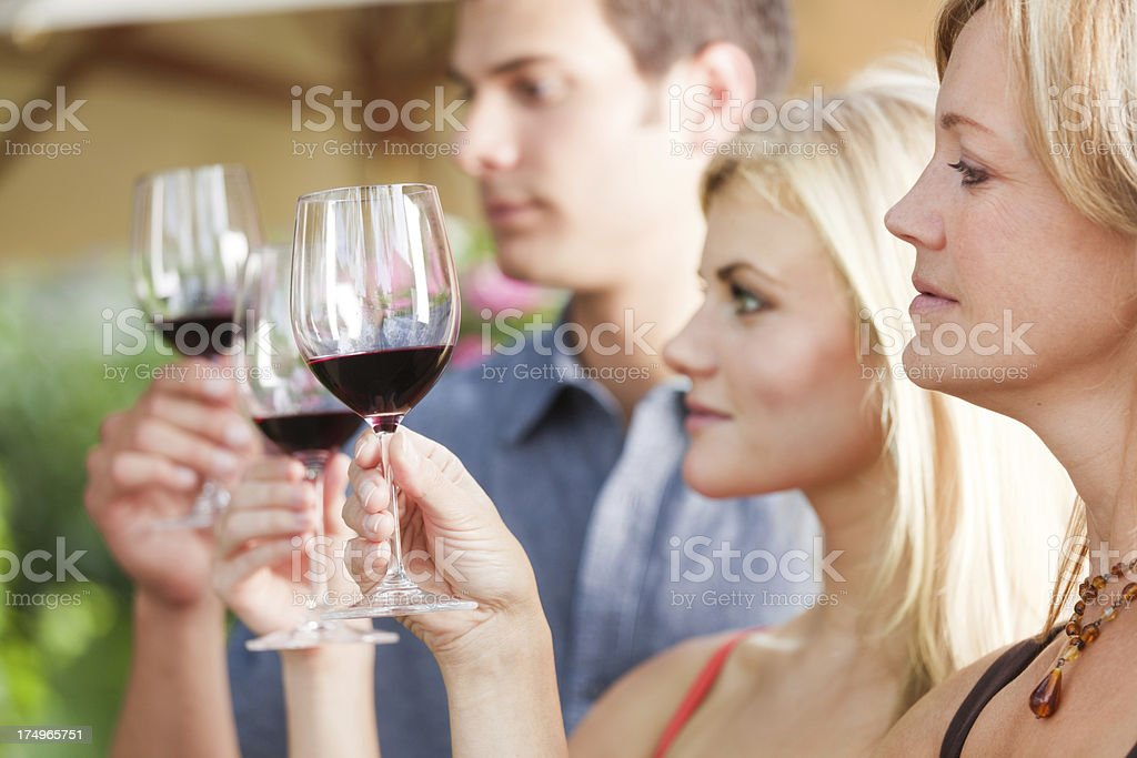People Winetasting, Group Smelling and Tasting Napa Valley Red Wine royalty-free stock photo