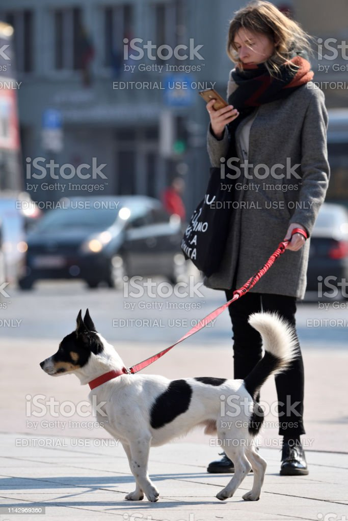 Unidentified people with dog in Vilnius Old Town on April 06, 2019 in...