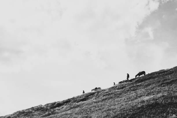 Menschen mit Pferden, die den Bergweg hinunterlaufen – Foto