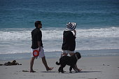 Carmel Beach, United States, - April 28 2018. People playing and walking with there dogs on the Californian beach.