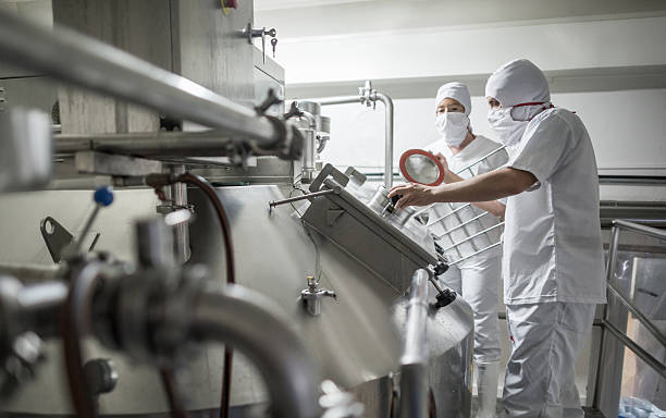 People working at a dairy factory stock photo