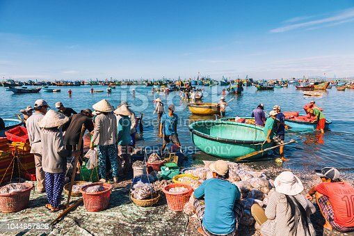 fishermen carrying seafood from big boat at sea in Mina, Vietnam