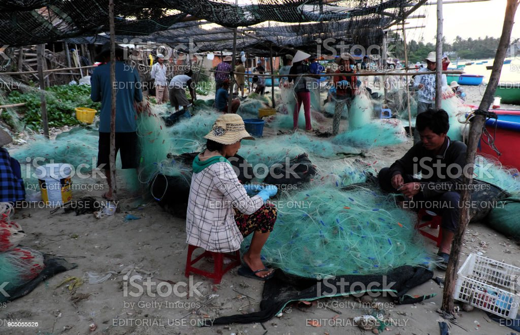 people working on beach at early morning stock photo