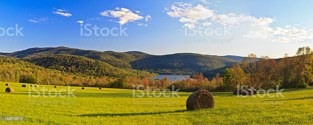 Pepacton Hay Field in Autumn stock photo