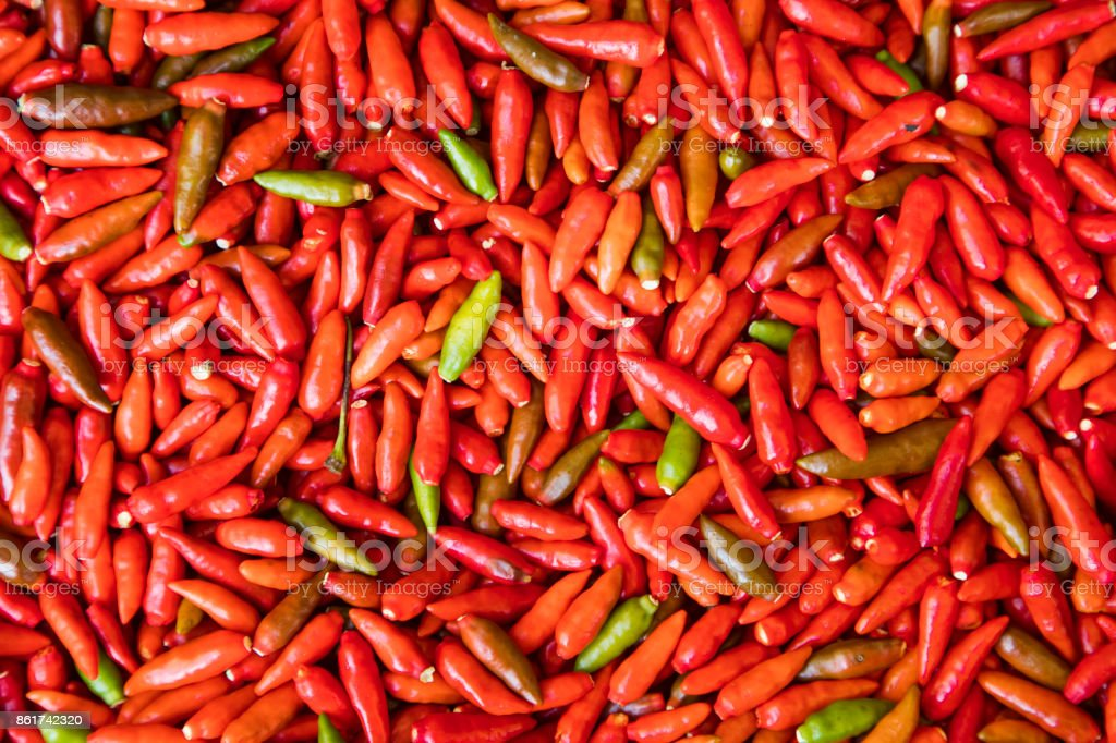 Pepper from the Amazon Region stock photo