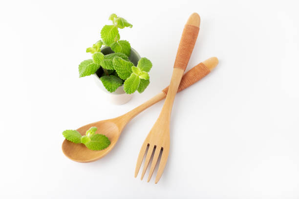 Peppermint aromatic herb for cooking and drinks stock photo