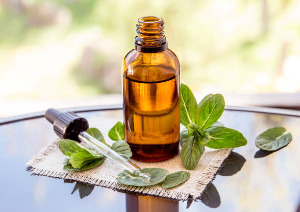 Peppermint essential oil or infusion in brown medical pipette bottle with decorative fresh mint branches on glass table, blur background. Peppermint essential oil or infusion in brown medical pipette bottle with decorative fresh mint branches on glass table, blur background. tincture stock pictures, royalty-free photos & images