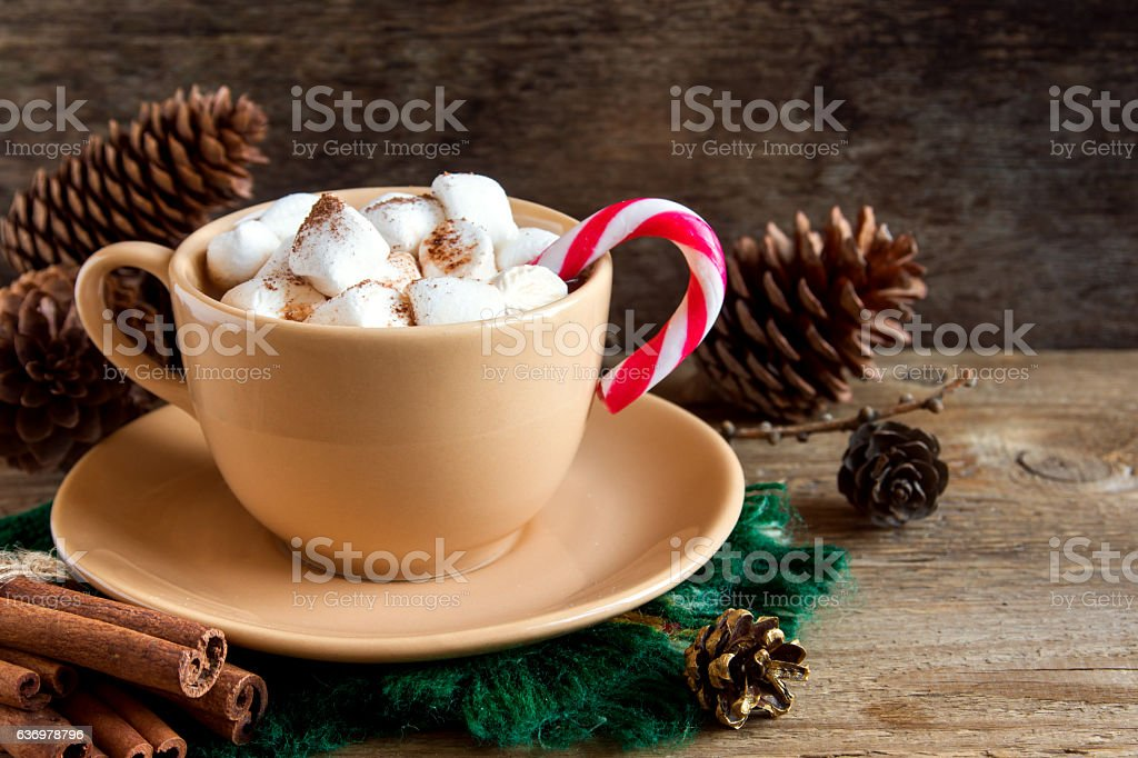 Peppermint hot chocolate stock photo