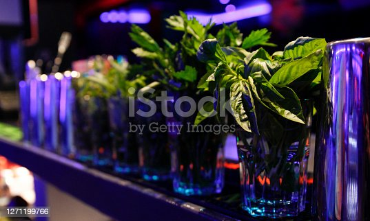Peppermint leaves to make a cocktail